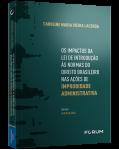 OS IMPACTOS DA LEI DE INTRODUÇÃO ÀS NORMAS DO DIREITO BRASILEIRO NAS AÇÕES DE IMPROBIDADE ADMINISTRATIVA
